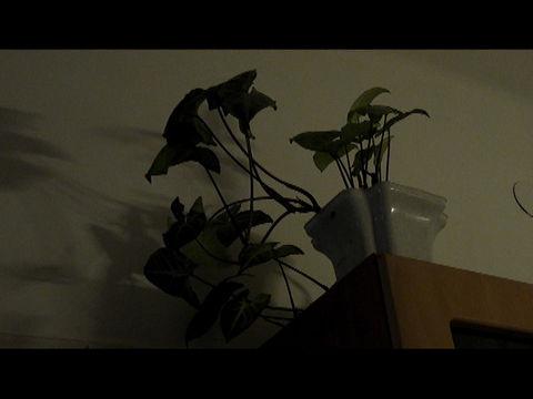 Milyen digitális videókamerát  - Mobilarena Hozzászólások b6571a1cad
